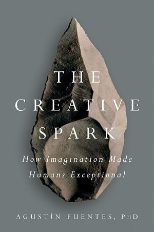 Fuentes - Creative Spark - Evolutionary