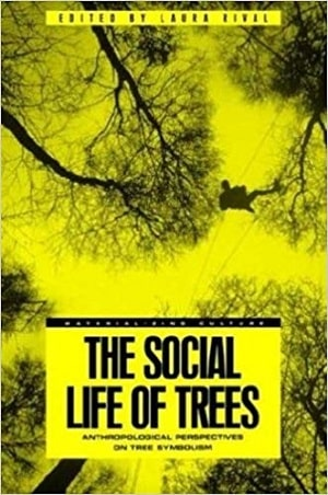 Rival - Social Life of Trees - Domestic